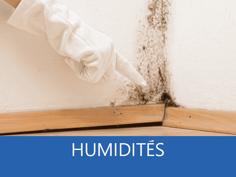 expertise humidité 84, expert humidité Avignon, cause moisissure 84, solutions humidité Vaucluse,
